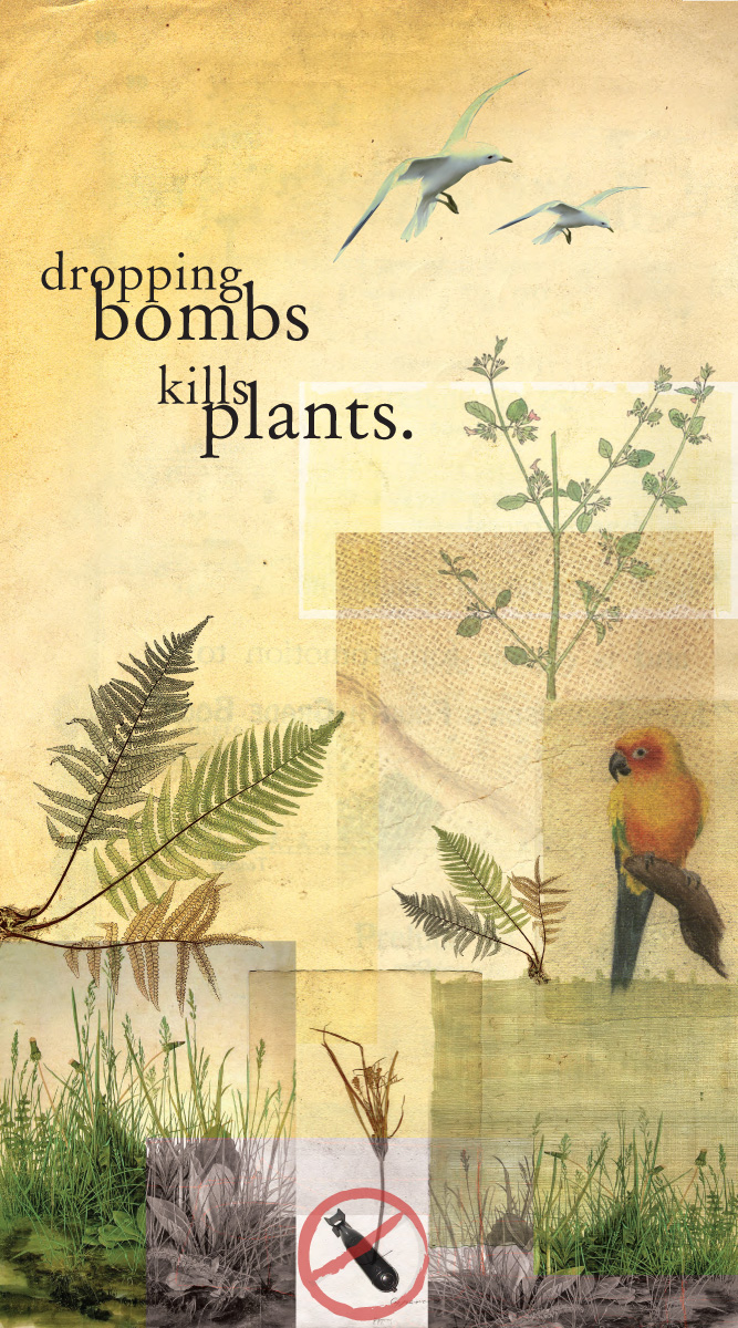 bombsplants1200.jpg