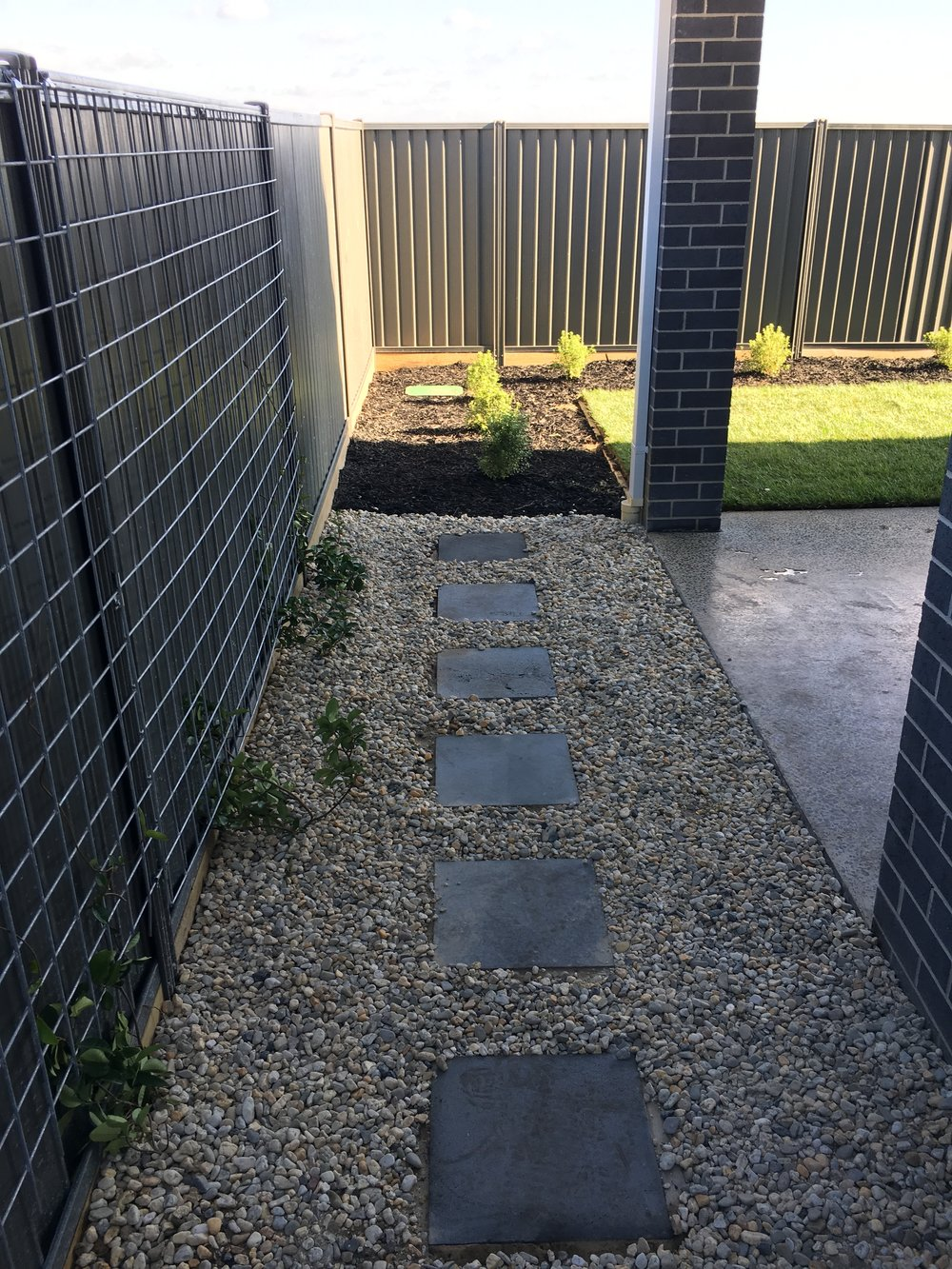 Pebble mulch with stepping pavers and wire for climbing plants on fence