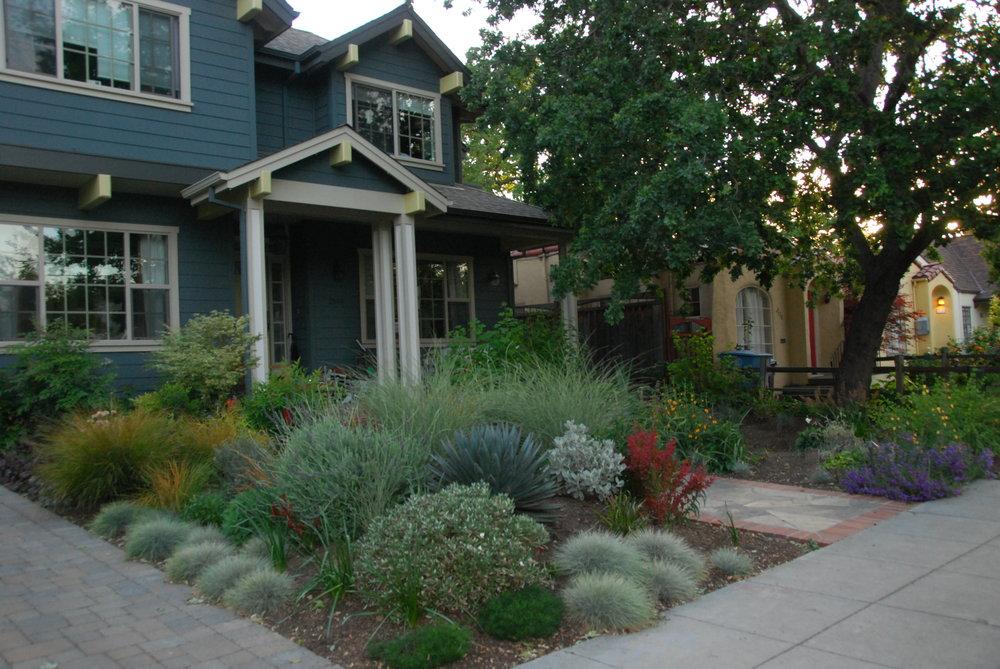 front_garden-west.JPG