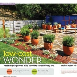 verdance-low-cost.jpg