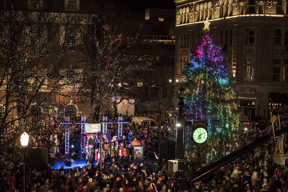 Copy of 2017_Christmastree_lighting039.jpg