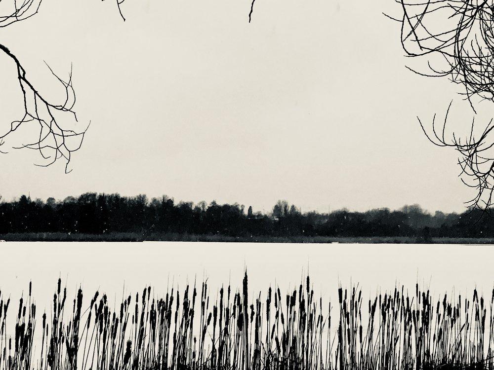 JANUAR: Sne gør verden stille og lys.