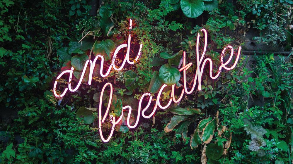 neon-banner.jpg