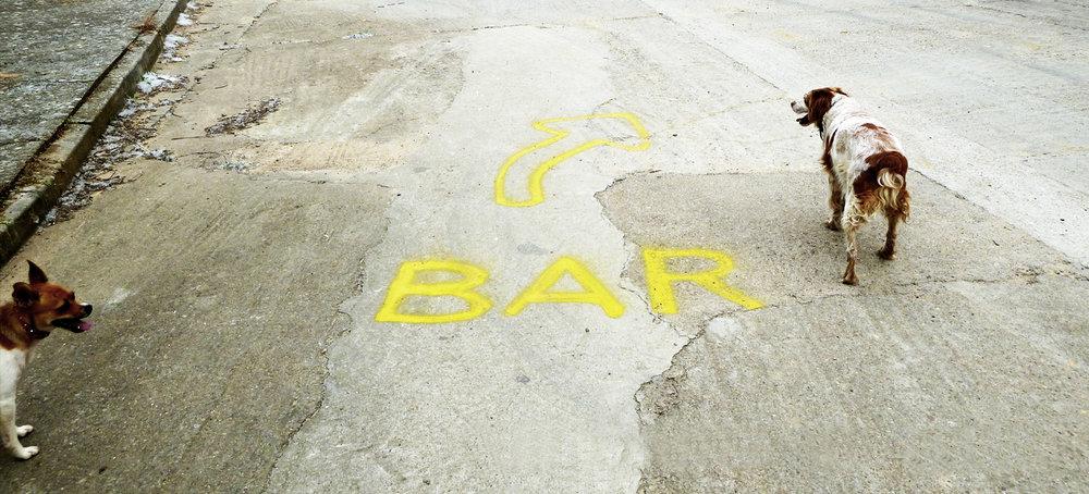 *bar.jpg