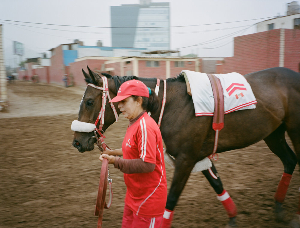 JockeysWeb7.jpg