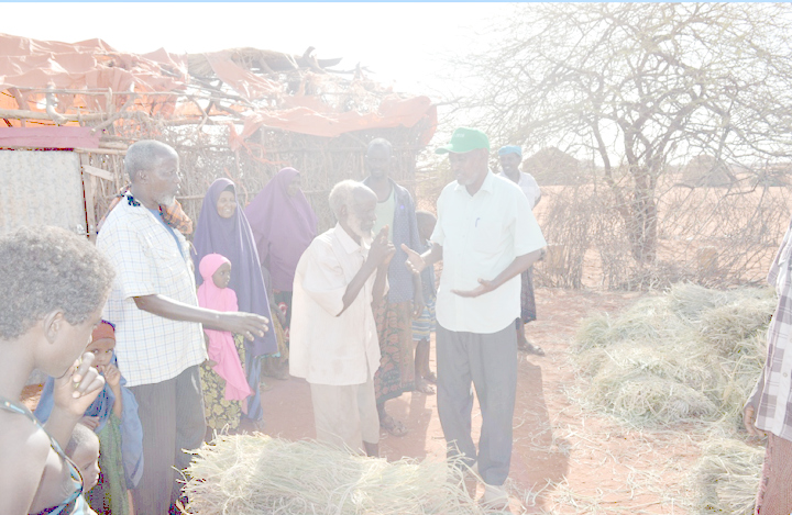 how do Ngos use climate information in somalia? -
