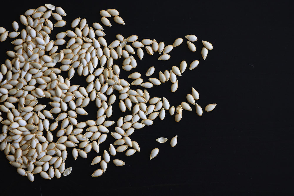 How to Roast Pumpkin Seeds - the dry seeds, just before roasting | In Carina's Kitchen