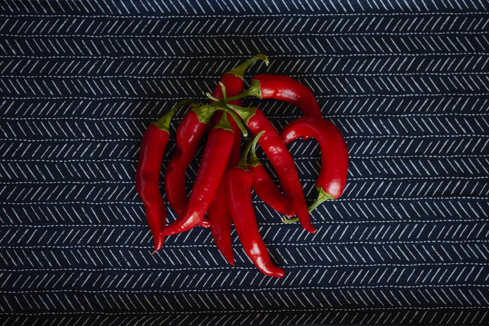 Spicy Homemade Chili Oil - the harvested chilies from my balcony, so pretty | In Carina's Kitchen