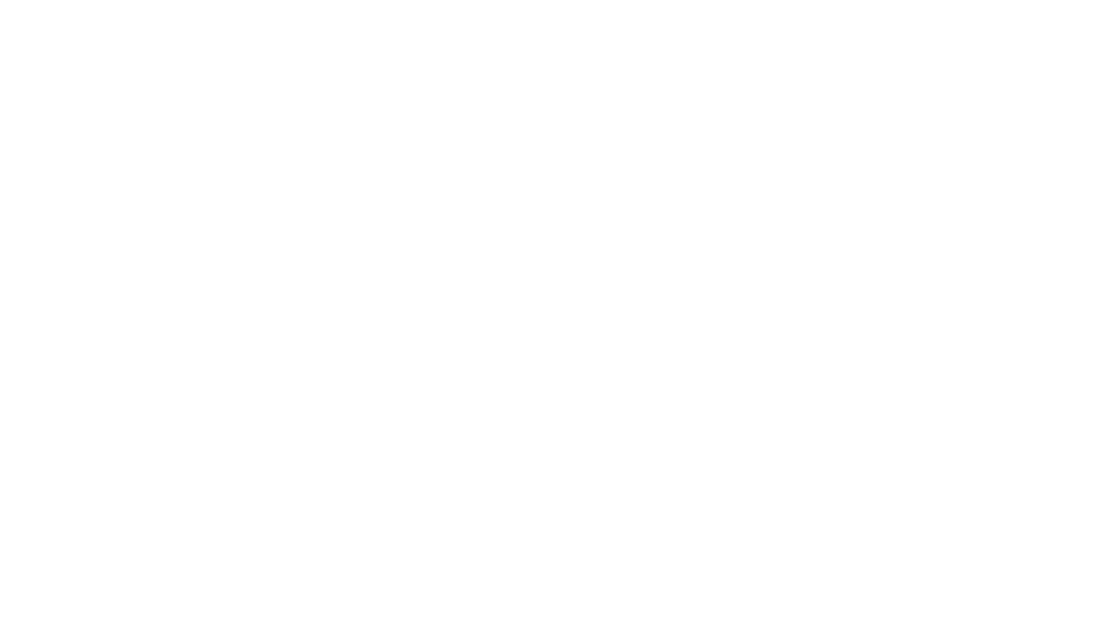 Baue Logo White