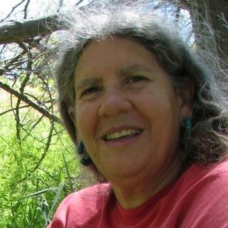 Karyn Sanders