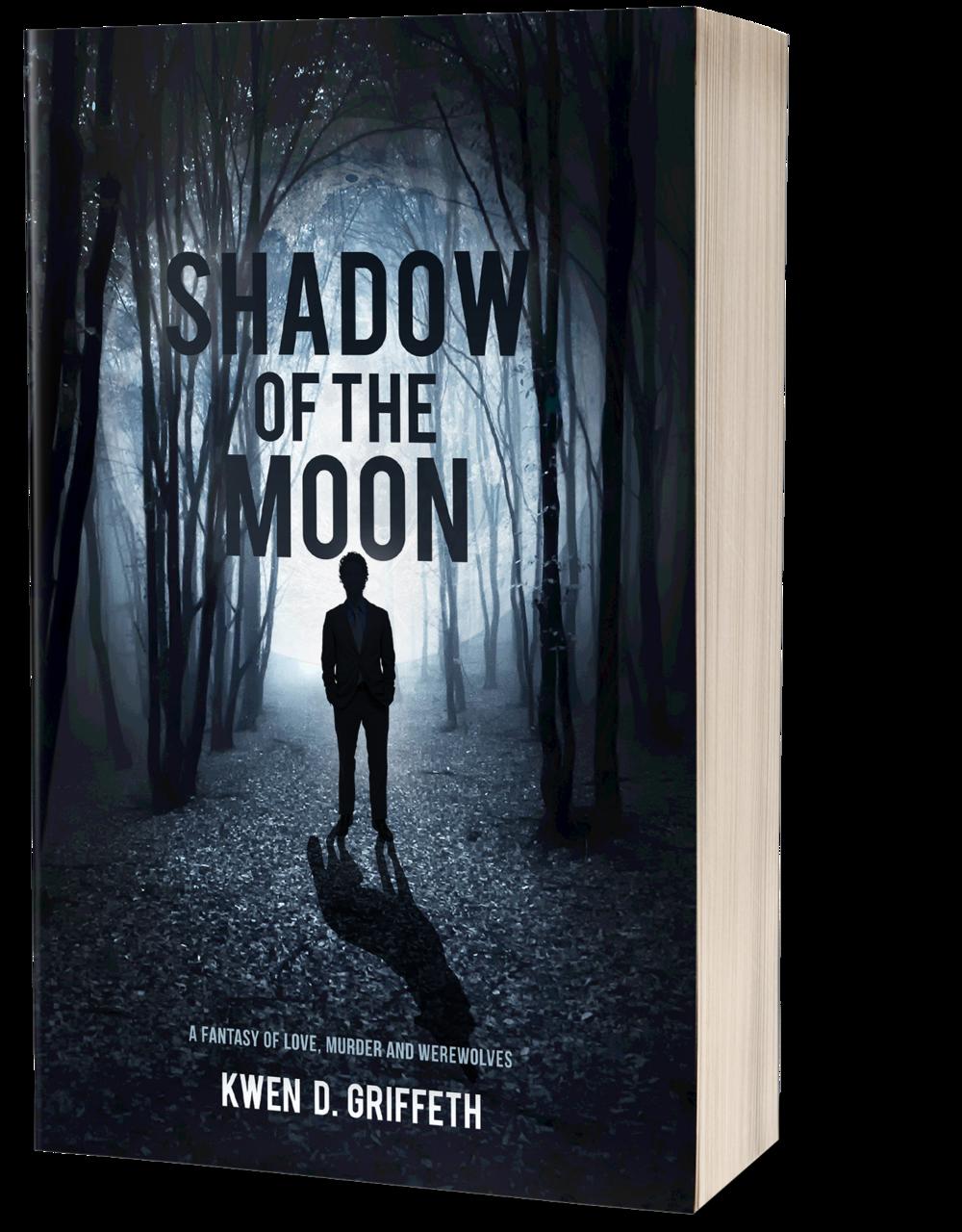 shadow book mockup.png