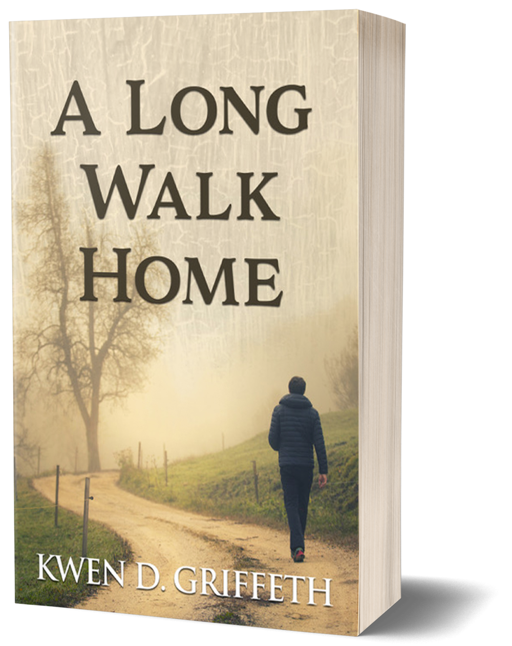 a long walk home book mockup.png