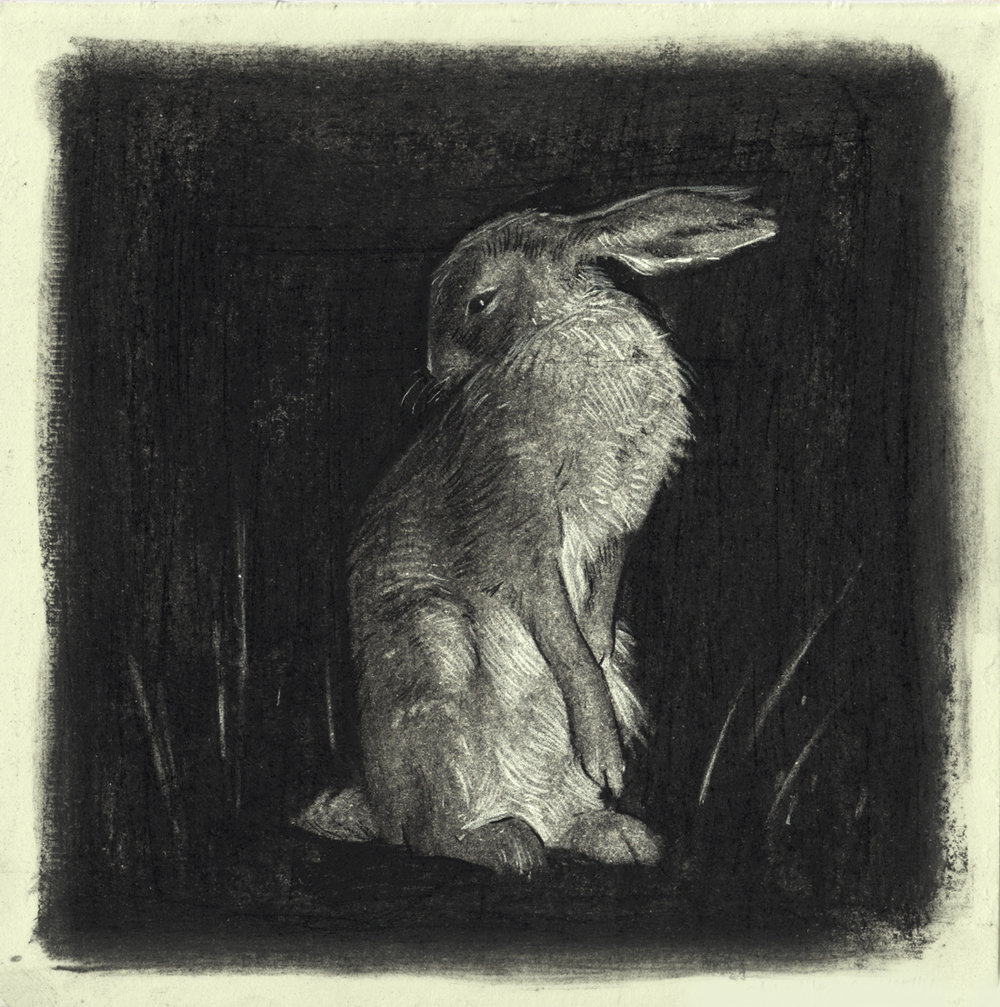 """""""Rabbit"""""""