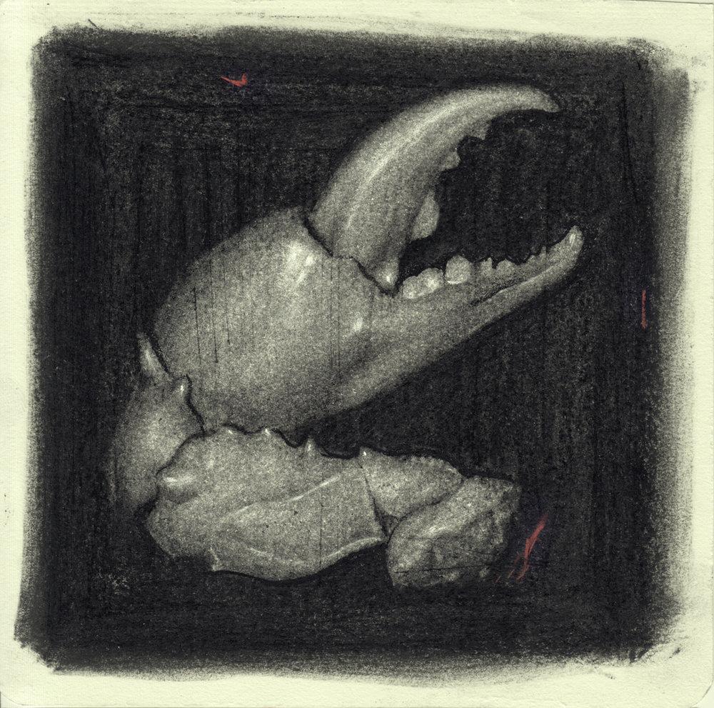 """""""Crab Claw"""""""