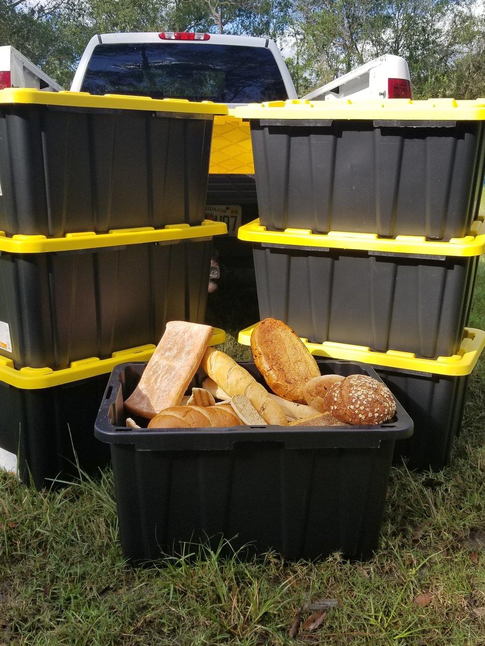 bread-bin-food-waste