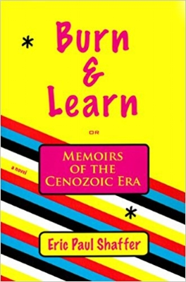 Purchase     Burn & Learn: Memoirs of the Cenozoic Era     (a novel -  2009)