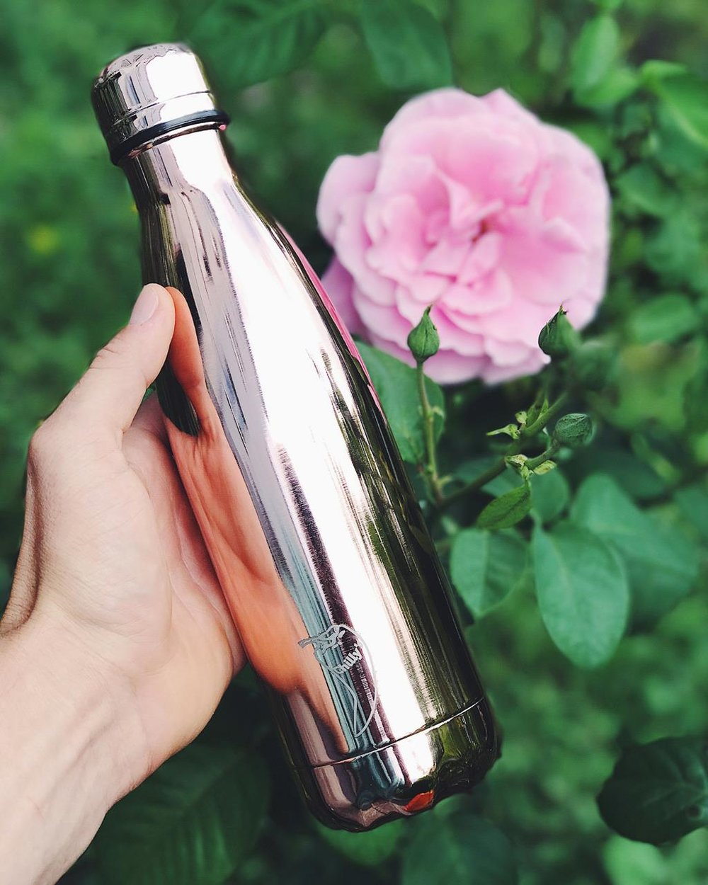 Chillys Bottle.jpg