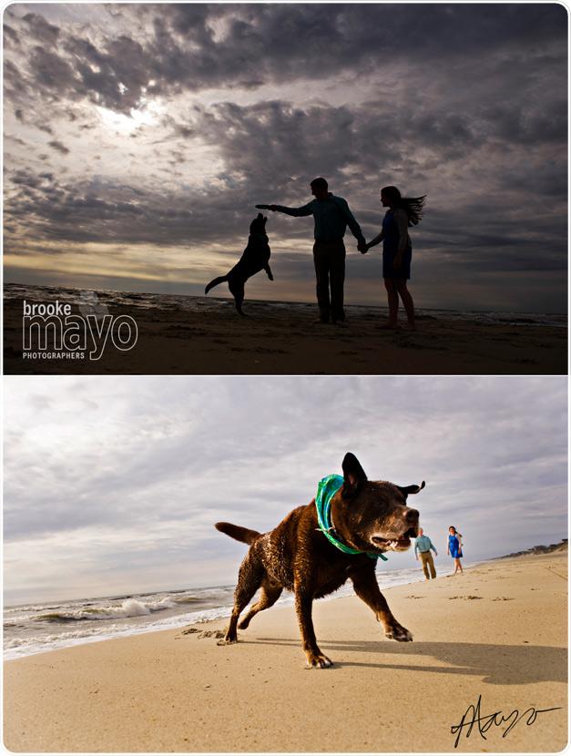 corolla_beachportraits_2