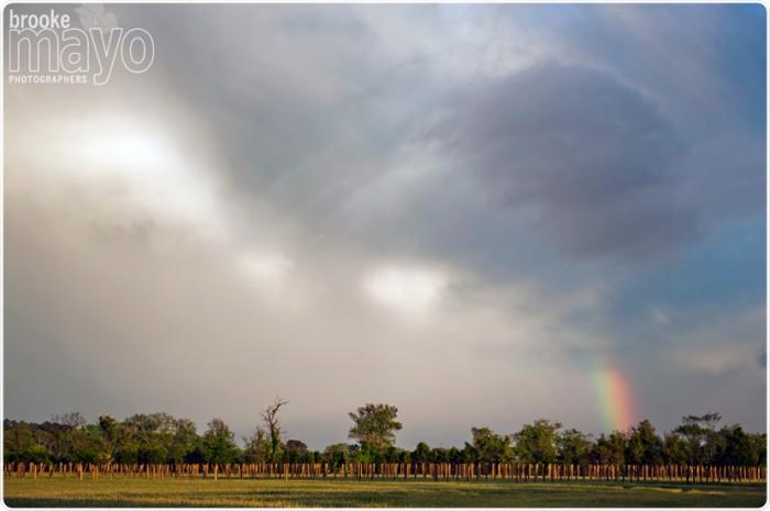 sanctuaryvineyards_rainbow