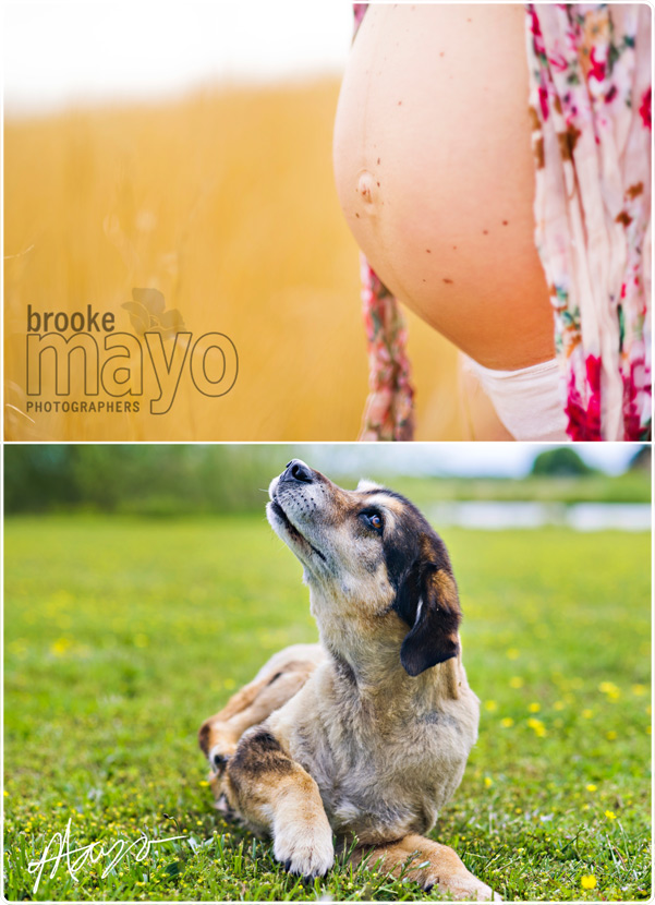 shawboro_maternity_001