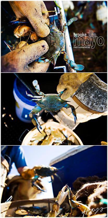 currituck_crabbing_005