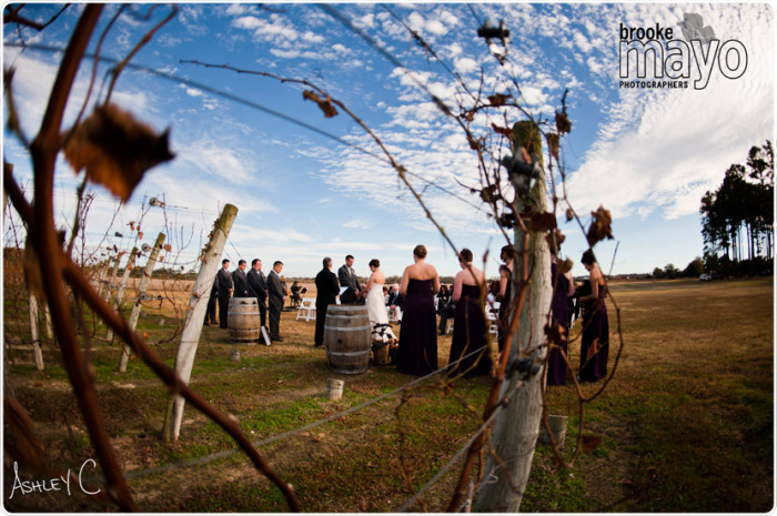 sanctuaryvineyards_wedding_photography_0003