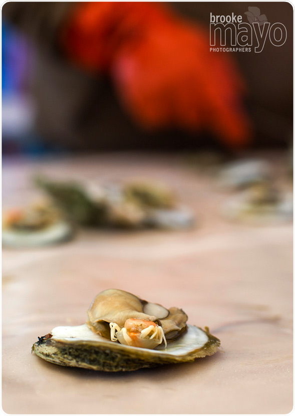currituck_oyster_roast_006