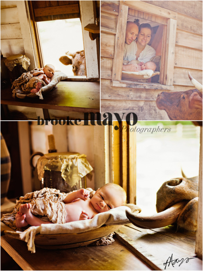 Manteo Newborn Portraits