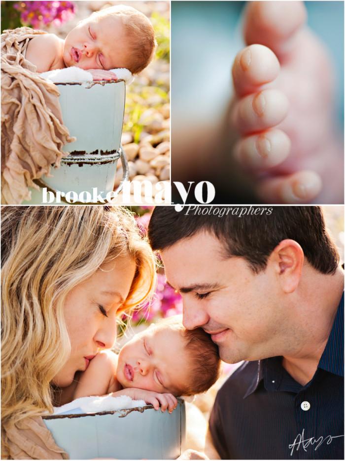 New Bern Newborn Portraits
