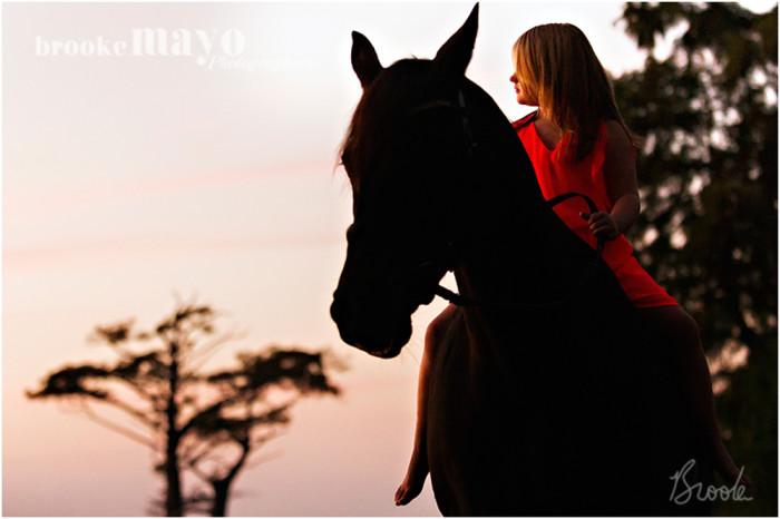 horse_sunset_2