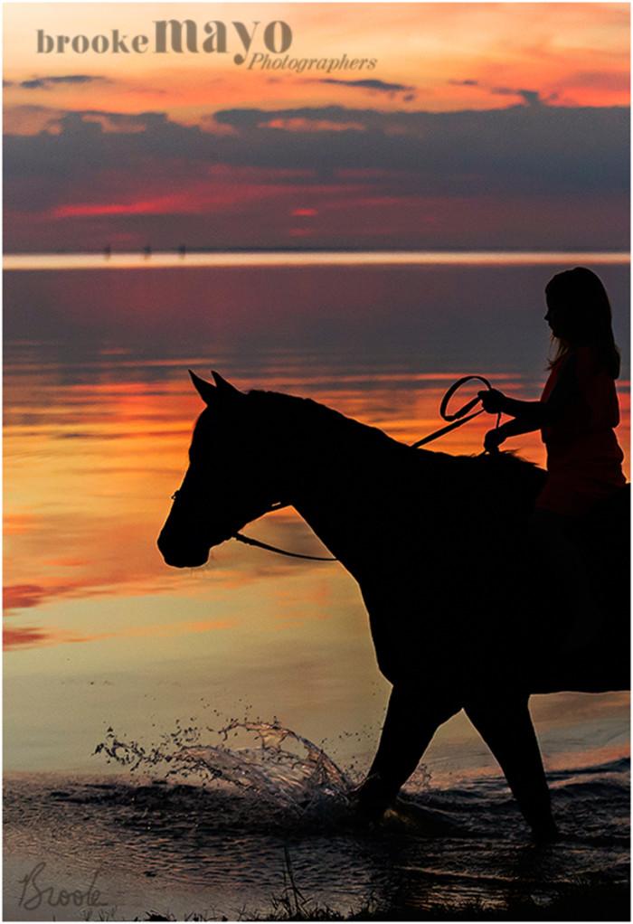 horse_sunset_5