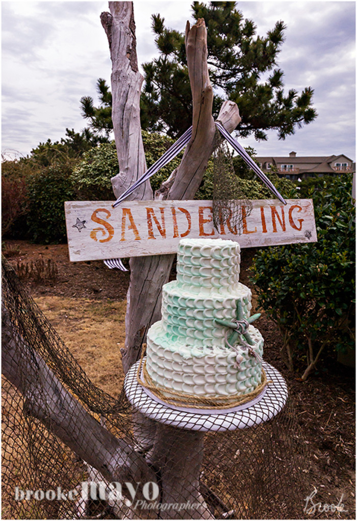 sanderling_17