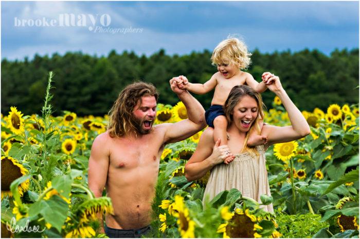 Sunflowers portraits