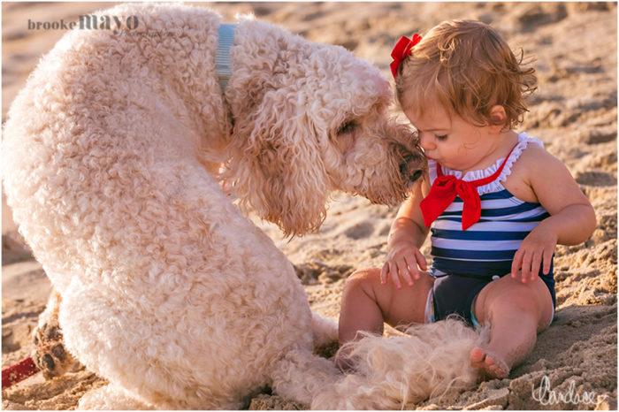 Pups & Babes