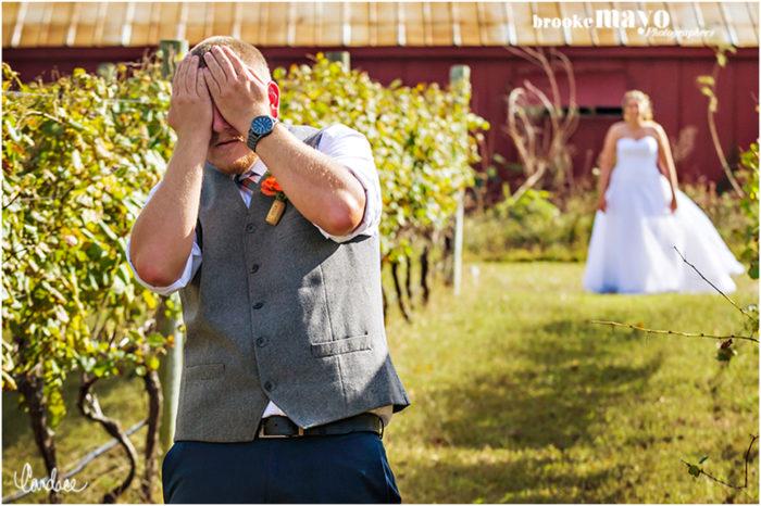 Sanctuary Vineyards