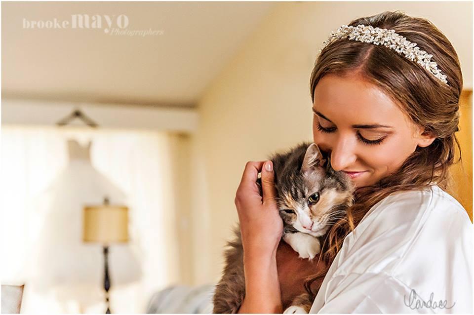 bride and cat