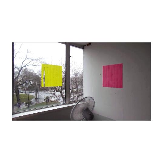 Carritt+Palmer+Flutterchromes+sample+image.jpg