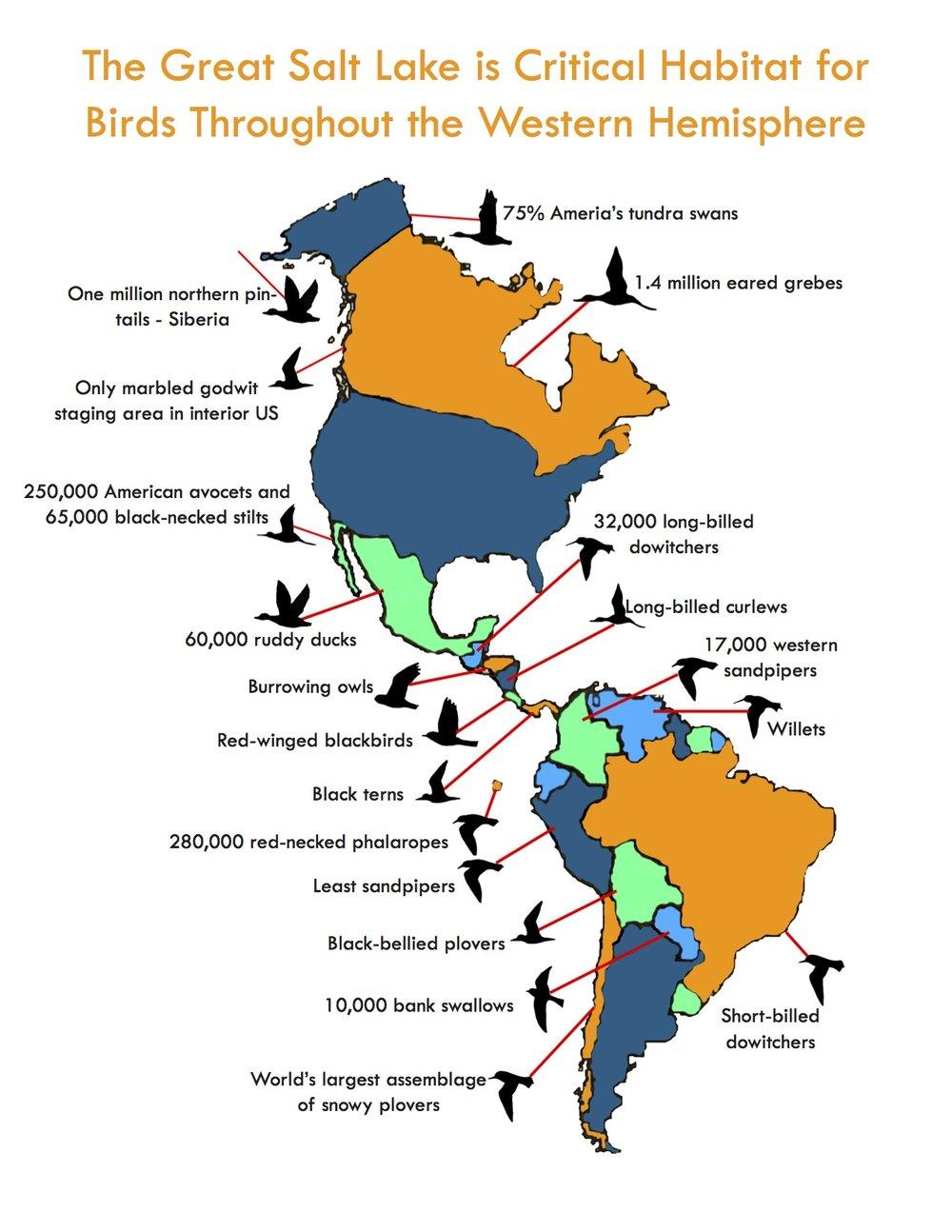 GSL-bird-map-with-text.jpg