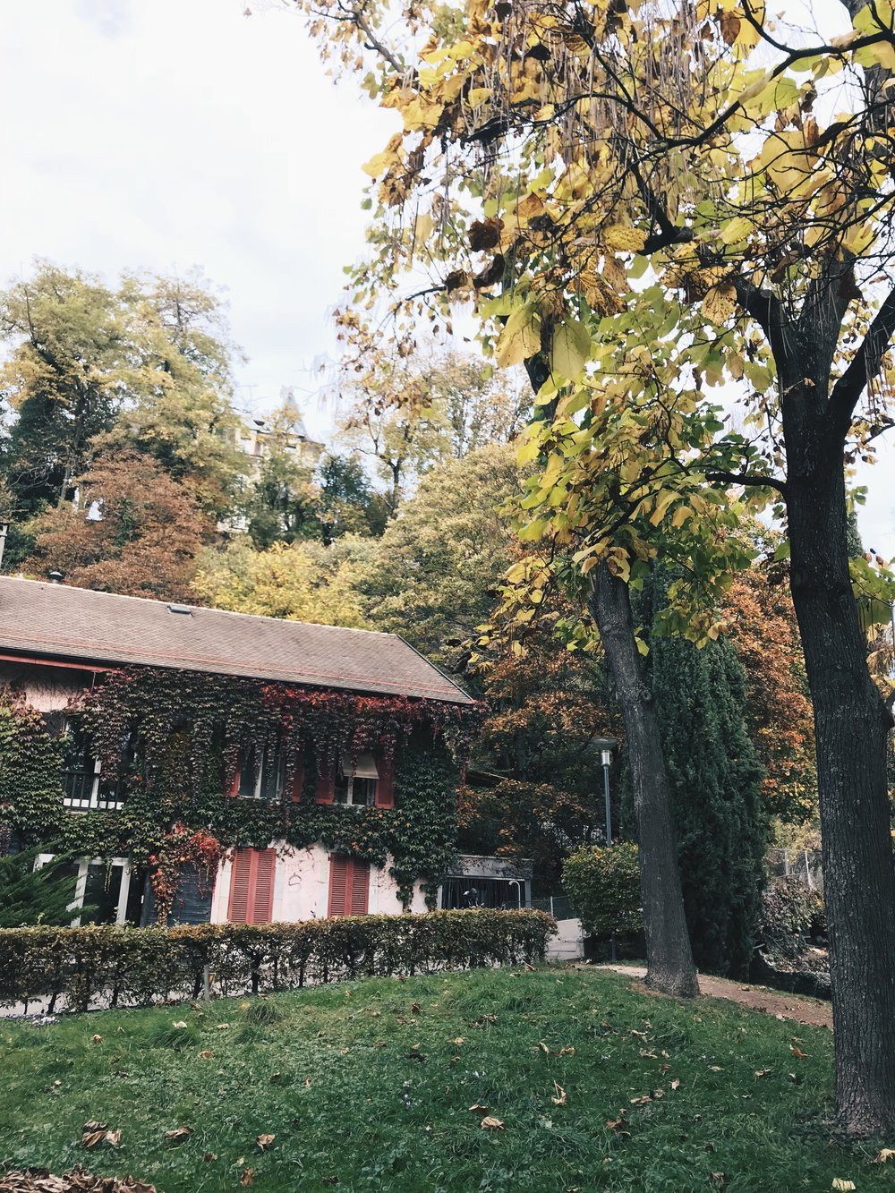 Autumn-in-Geneva.jpg