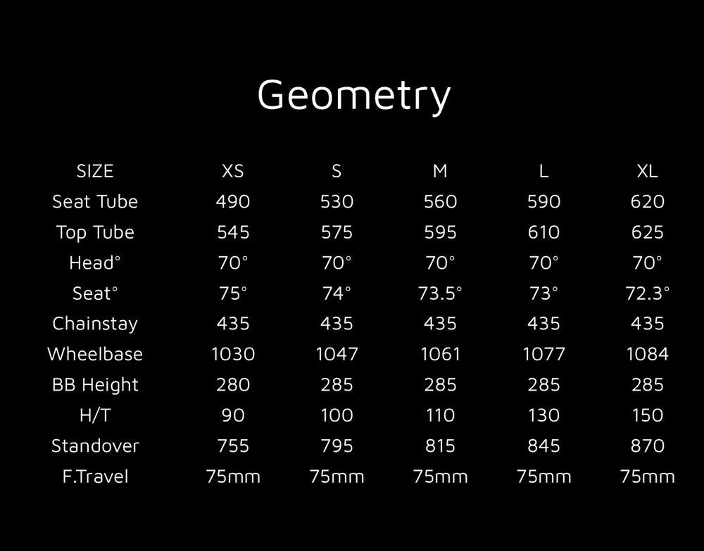 2014 Salish Geometry .jpg