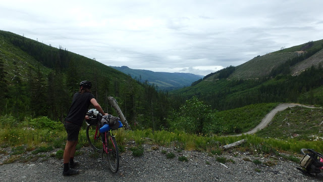 Vancouver Island can make you feel small pretty quick. This is only a few hours ride from Victoria.