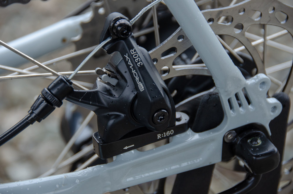 Romulus rear brake.jpg