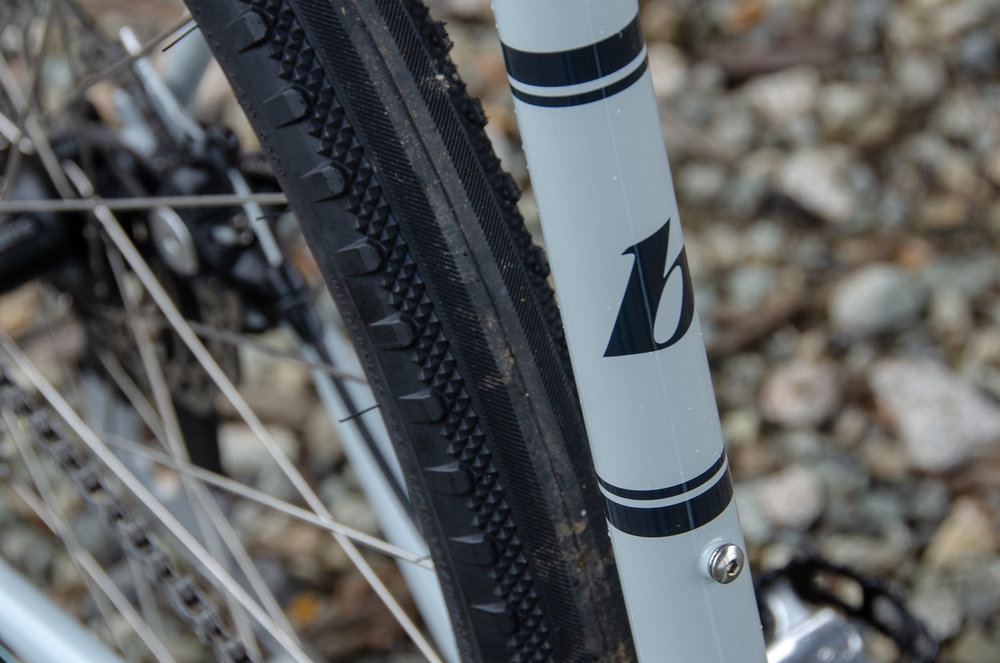 Romulus downtube.jpg