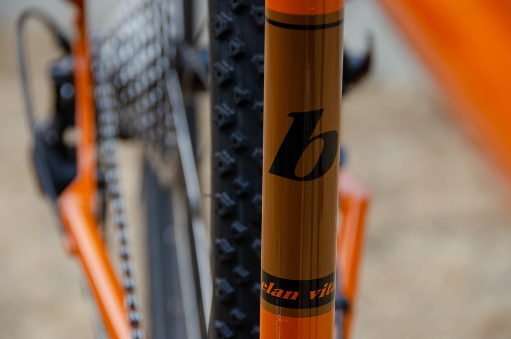 Elan Vital seat tube graphic.jpg