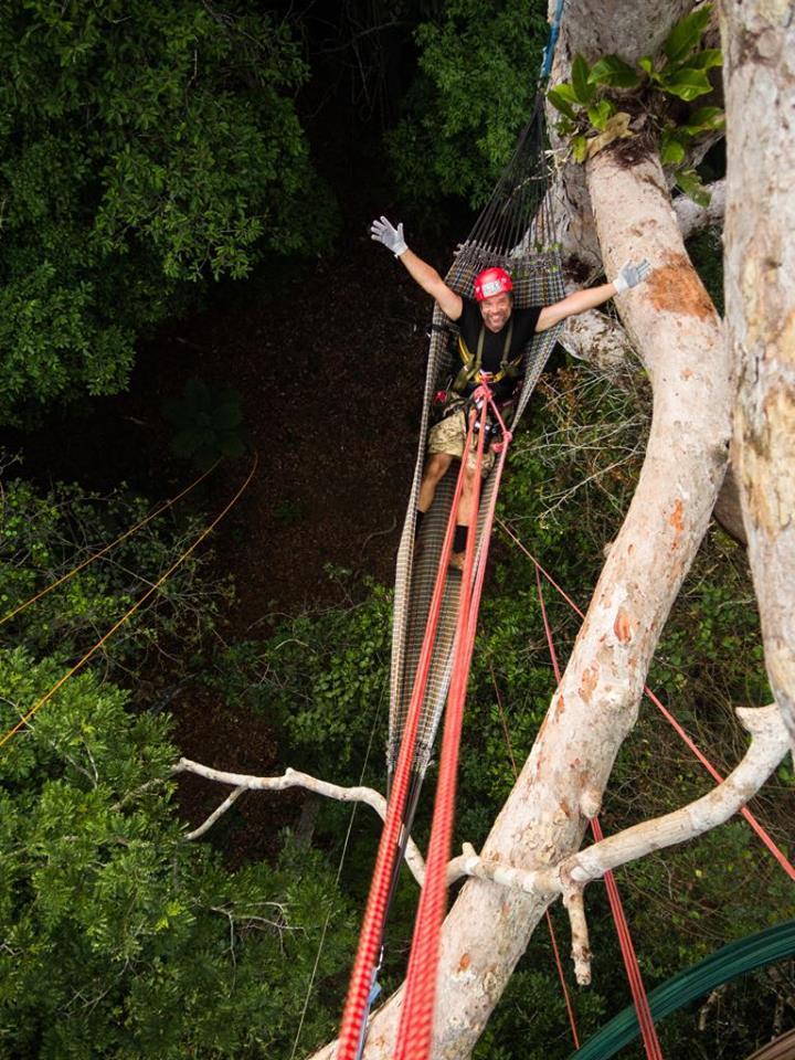 Andrzej Rybak klettert auf einen Urwaldriesen ( erschienen auf    Spiegel Online ) Bild: Leonide Principe