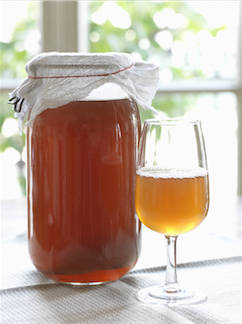 VG_Kombucha-with-glass-small.png
