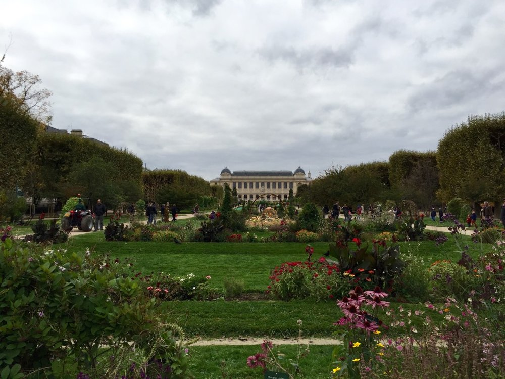 jardin-des-plantes.jpg