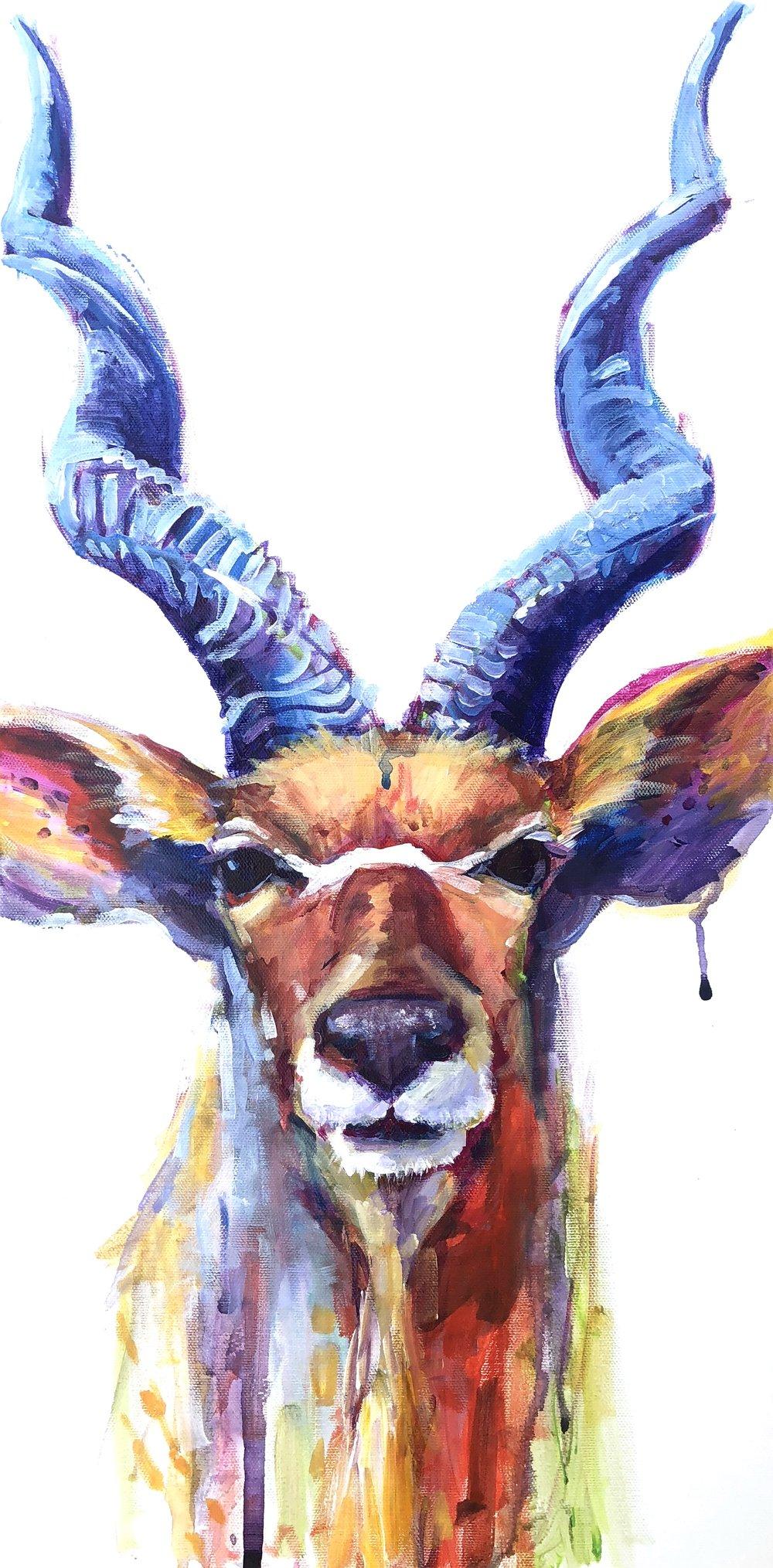 animal paintings amy eichler fine art