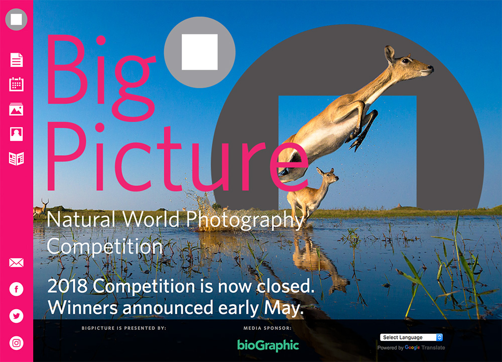 big-picture-photo-contest-2018.jpg