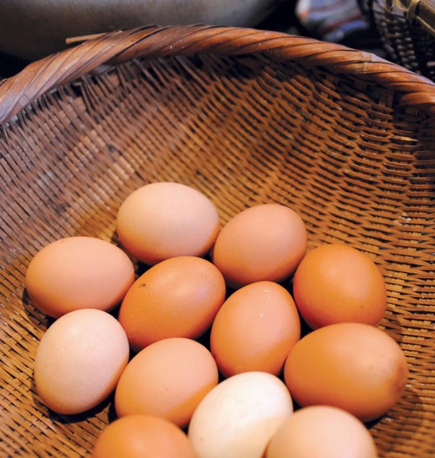 hojasana_recetas-japon arroz con huevo 02.jpg
